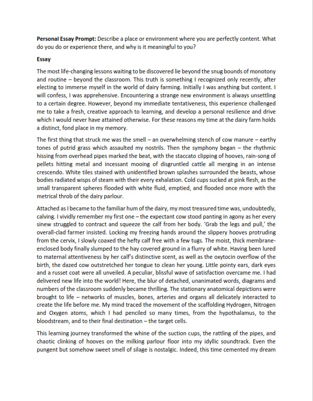 College Admissions Essay Format Heading Example  (PDF)