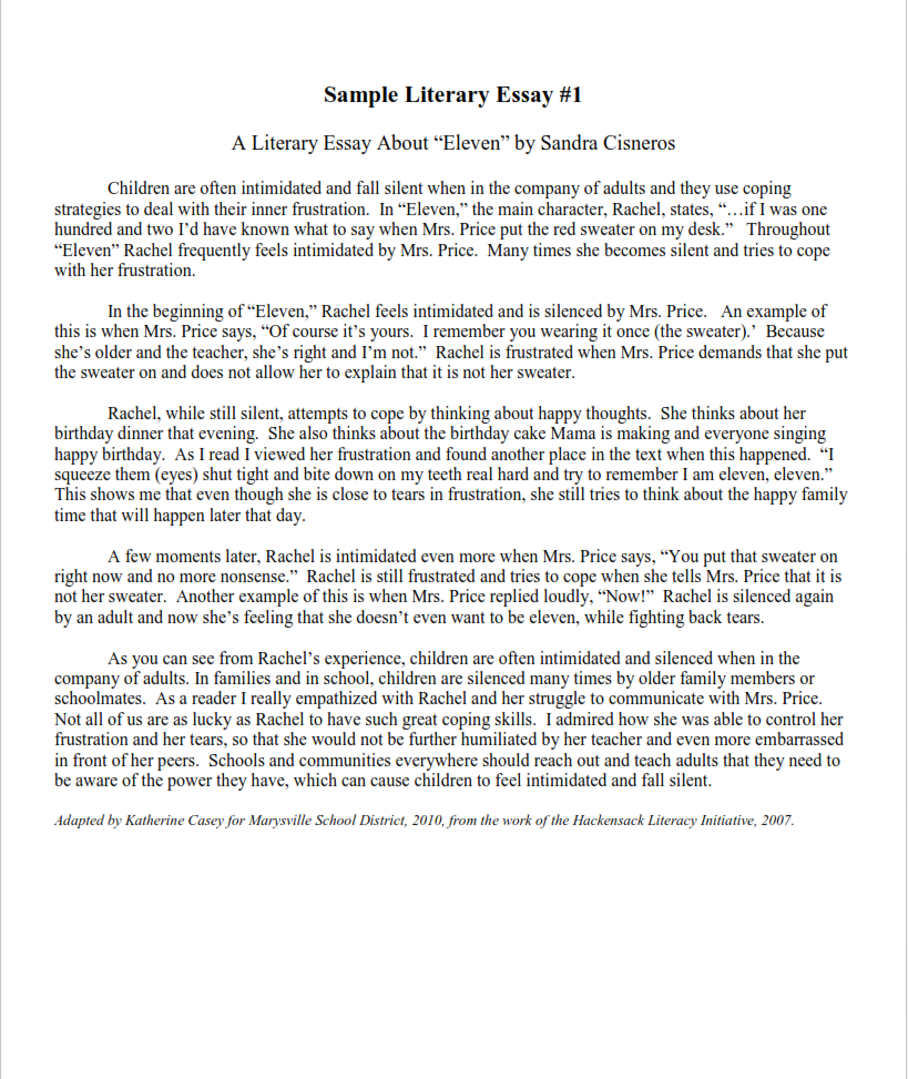 Literary Analysis Essay Example for College